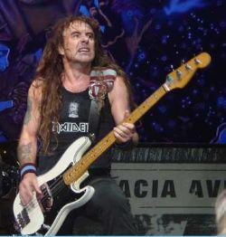 iron maiden steve harris bass