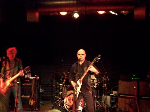 wishboneash_freiburg1