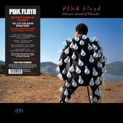 Pink Floyd - Delicate Sound Of Thunder (LP, Reissue)