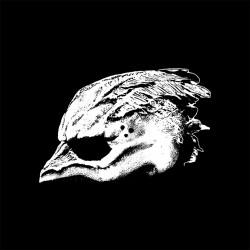 Legend Of The Seagullmen - s/t