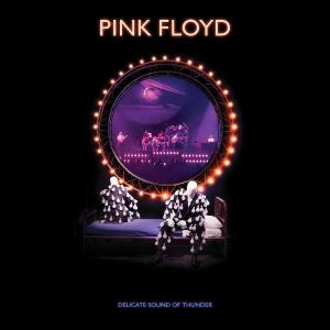 Pink Floyd - A Delicate Sound Of Thunder (Remix 2019) (2CD)