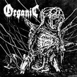 Organic - Carved In Flesh